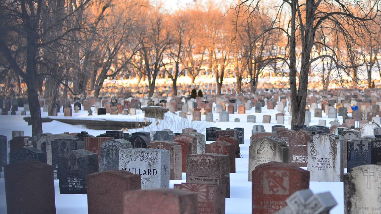 Ölüme Bağlı Tasarruflarda İrade Sakatlığı Nedeniyle Tasarrufun İptali